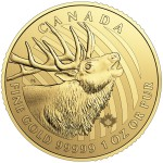1 Ounce Gold Canadian Elk